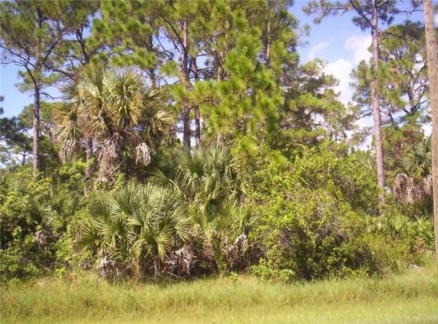 5867 David Boulevard, Port Charlotte, FL 33981 (MLS #C7420800) :: GO Realty