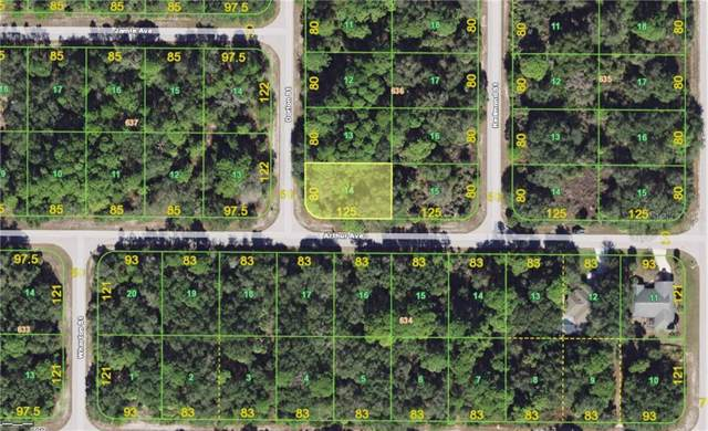 17190 Arthur Avenue, Port Charlotte, FL 33948 (MLS #C7421292) :: Griffin Group