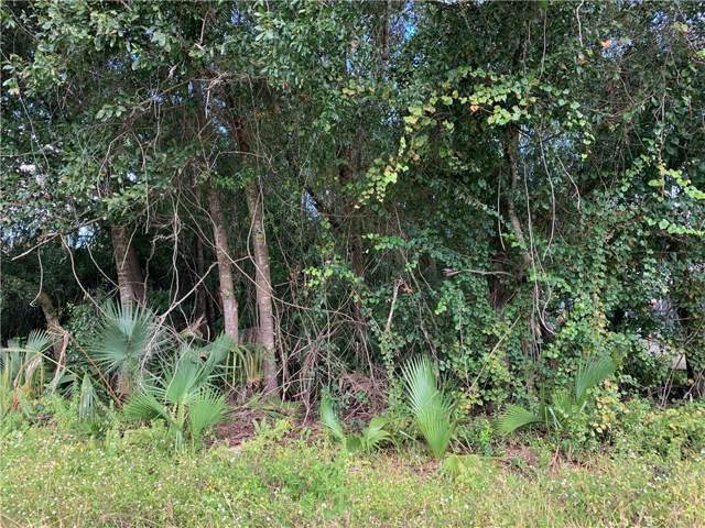 1614 NE Floridian Circle, Arcadia, FL 34266 (MLS #C7421315) :: 54 Realty