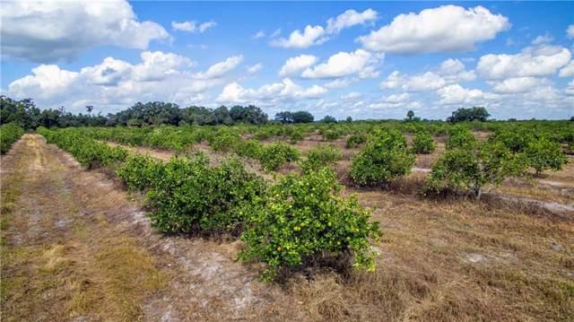 Neal Road, Punta Gorda, FL 33982 (MLS #C7421385) :: Ideal Florida Real Estate