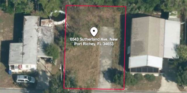 6543 Sutherland Avenue, New Port Richey, FL 34653 (MLS #C7421603) :: Premier Home Experts