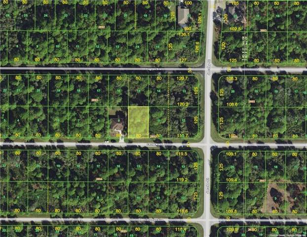 13486 Carrie Avenue, Port Charlotte, FL 33953 (MLS #C7421910) :: Burwell Real Estate