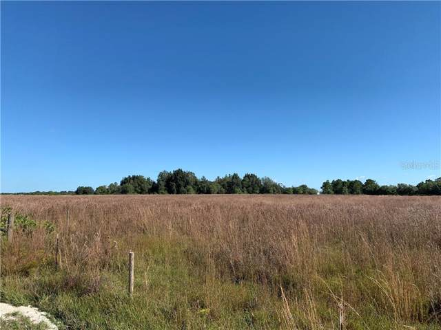 SW West Farms Road, Arcadia, FL 34266 (MLS #C7422329) :: Medway Realty