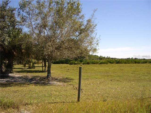 49005 Bermont Road, Punta Gorda, FL 33982 (MLS #C7422342) :: Team Bohannon Keller Williams, Tampa Properties