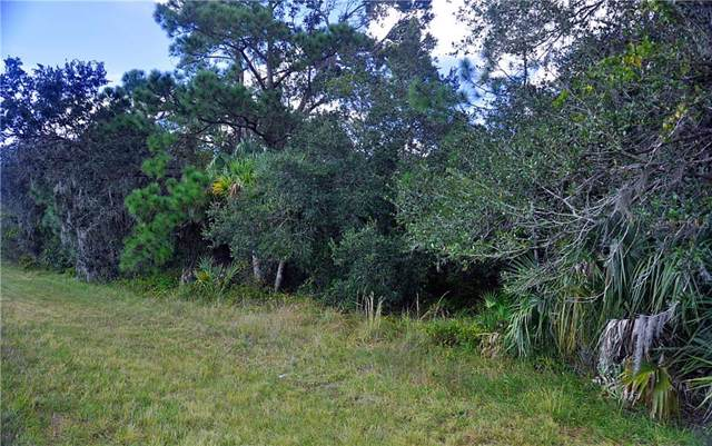 20238 Kenilworth Boulevard, Port Charlotte, FL 33954 (MLS #C7422757) :: Armel Real Estate
