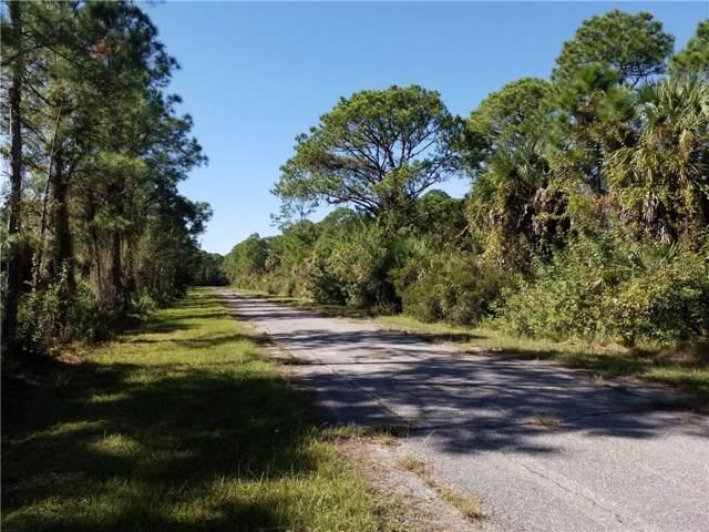13571 Grealy Avenue, Port Charlotte, FL 33953 (MLS #C7422921) :: Team Borham at Keller Williams Realty