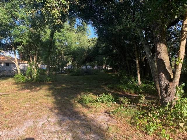 NE Hammock Street, Arcadia, FL 34266 (MLS #C7423182) :: The Duncan Duo Team
