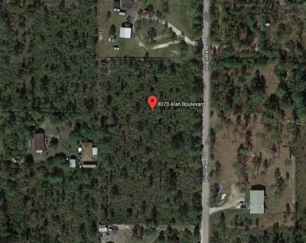 8073 Alan Boulevard, Punta Gorda, FL 33982 (MLS #C7423315) :: The Duncan Duo Team
