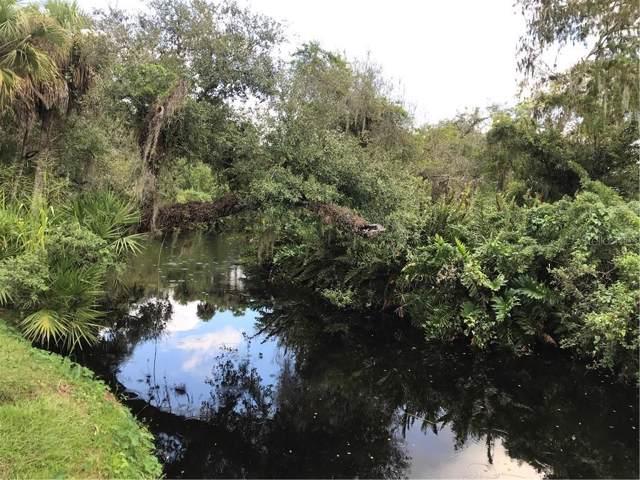 20011 Cypress Creek Drive, Alva, FL 33920 (MLS #C7423318) :: Alpha Equity Team