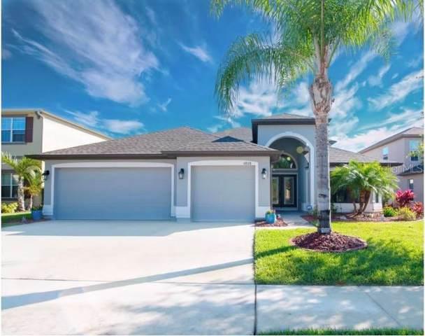 4808 Diamonds Palm Loop, Wesley Chapel, FL 33543 (MLS #C7423392) :: Lock & Key Realty