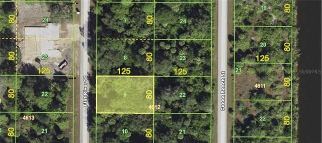 10086 Flat River Street, Port Charlotte, FL 33981 (MLS #C7423472) :: Cartwright Realty