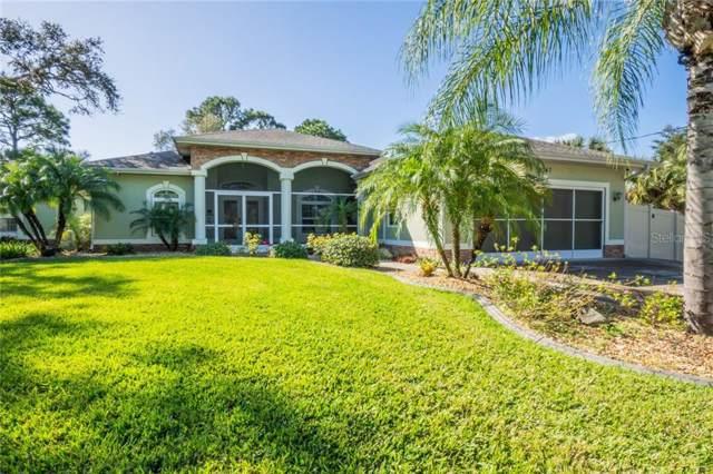 2347 Sparkle Lane, North Port, FL 34286 (MLS #C7423787) :: Armel Real Estate