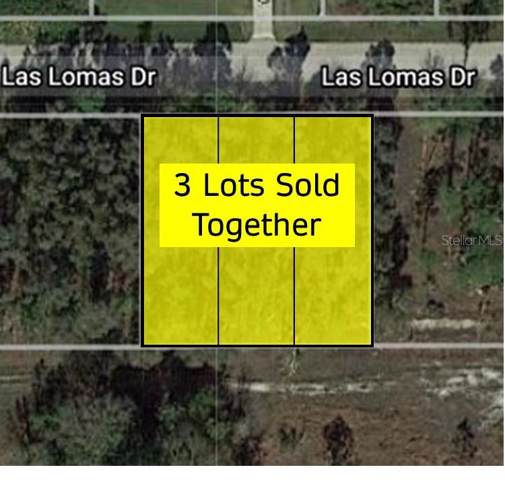 27343 Las Lomas Drive, Punta Gorda, FL 33955 (MLS #C7423924) :: Mark and Joni Coulter | Better Homes and Gardens