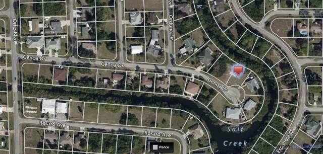 Genoa Drive, North Port, FL 34287 (MLS #C7424335) :: GO Realty