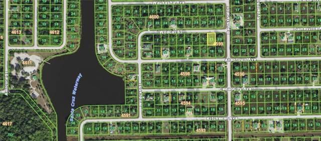 10138 Wildcat Street, Port Charlotte, FL 33981 (MLS #C7424553) :: Armel Real Estate