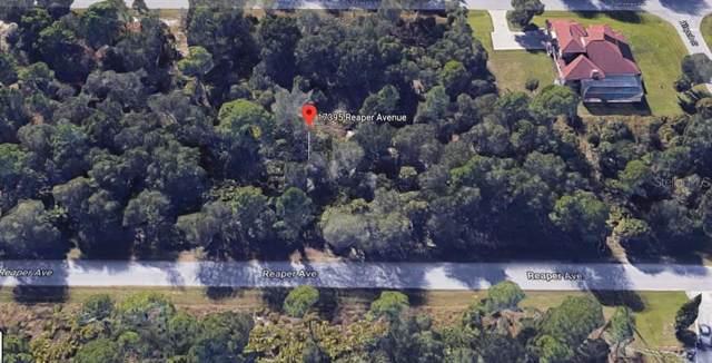 17395 Reaper Avenue, Port Charlotte, FL 33948 (MLS #C7424648) :: Cartwright Realty