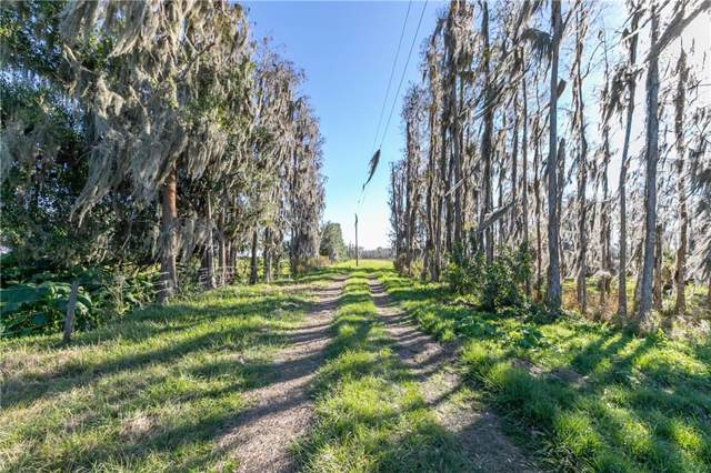 1930 Fish Branch Road, Zolfo Springs, FL 33890 (MLS #C7424768) :: Young Real Estate