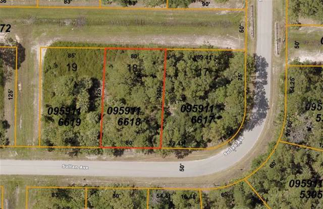 Sultan Avenue, North Port, FL 34286 (MLS #C7425006) :: The Duncan Duo Team