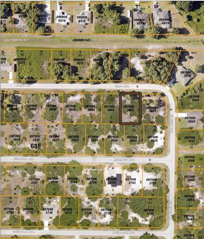 Mayo Avenue, North Port, FL 34291 (MLS #C7425100) :: Prestige Home Realty