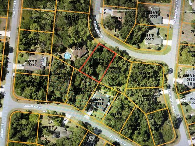 Halladay Street, North Port, FL 34287 (MLS #C7425443) :: Rabell Realty Group