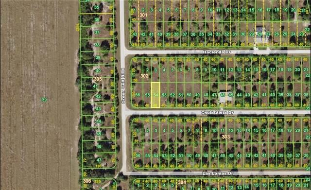 27034 Chula Vista Drive, Punta Gorda, FL 33955 (MLS #C7425739) :: Homepride Realty Services