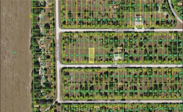 27046 Chula Vista Drive, Punta Gorda, FL 33955 (MLS #C7425743) :: Homepride Realty Services