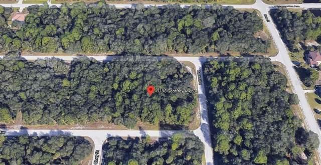 17198 Geoffrey Avenue, Port Charlotte, FL 33948 (MLS #C7426233) :: Homepride Realty Services