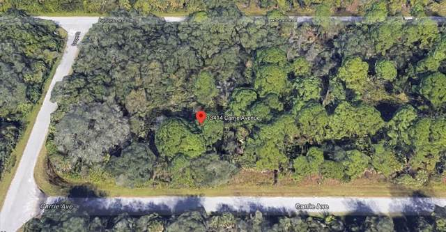 13414 Carrie Avenue, Port Charlotte, FL 33953 (MLS #C7426633) :: Griffin Group