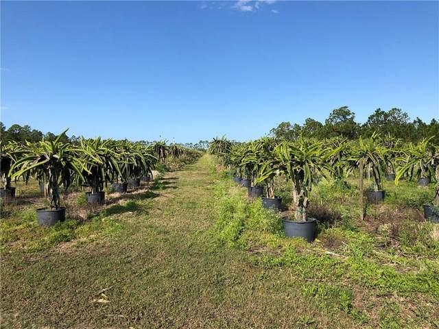 47040 Bermont Road, Punta Gorda, FL 33982 (MLS #C7426650) :: The Light Team