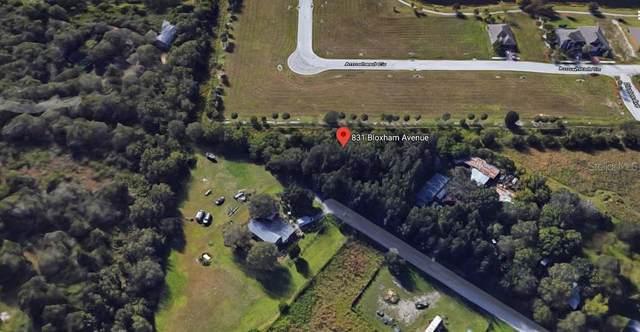 831 Bloxham Avenue, Punta Gorda, FL 33982 (MLS #C7426711) :: Delgado Home Team at Keller Williams