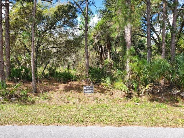 Wildgoose Drive, North Port, FL 34291 (MLS #C7427045) :: Carmena and Associates Realty Group