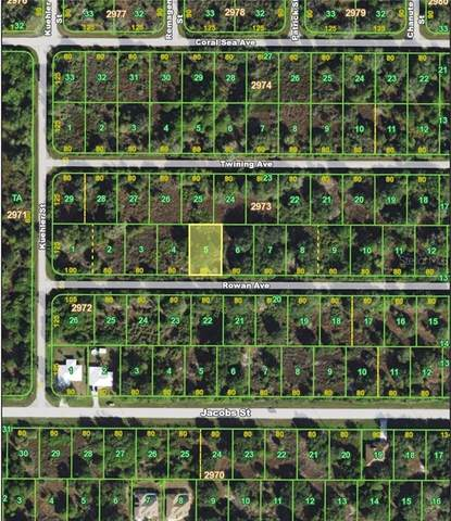 14452 Rowan Avenue, Port Charlotte, FL 33953 (MLS #C7427317) :: Cartwright Realty