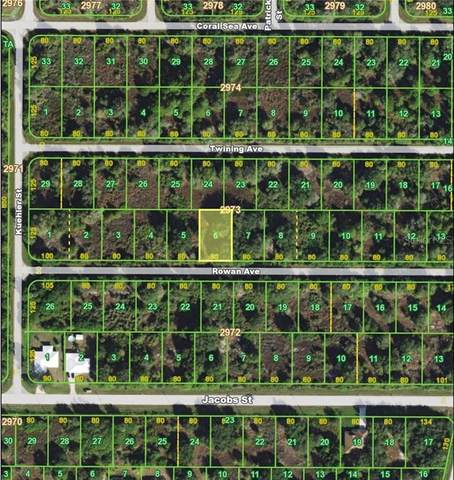 14460 Rowan Avenue, Port Charlotte, FL 33953 (MLS #C7427318) :: Cartwright Realty