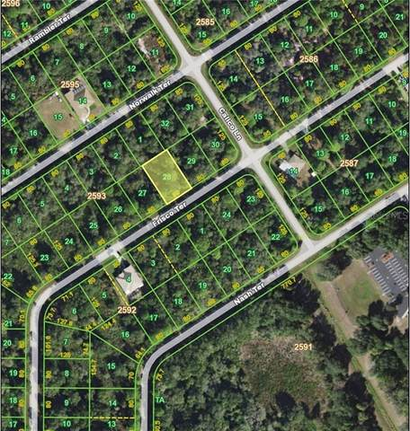 1513 Frisco Terrace, Port Charlotte, FL 33953 (MLS #C7427322) :: Lockhart & Walseth Team, Realtors