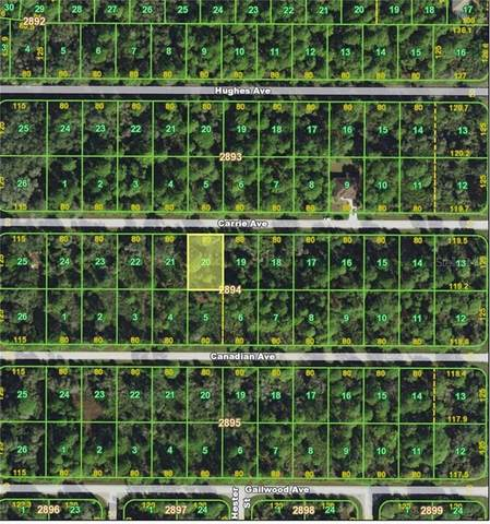 13445 Carrie Avenue, Port Charlotte, FL 33953 (MLS #C7427323) :: Griffin Group