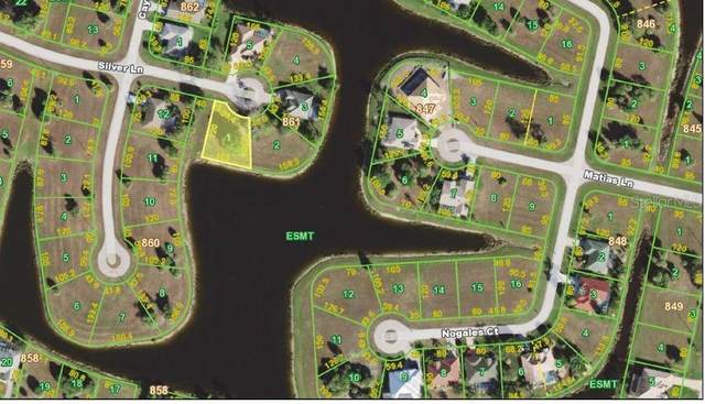 24283 Silver Lane, Punta Gorda, FL 33955 (MLS #C7427612) :: The Light Team