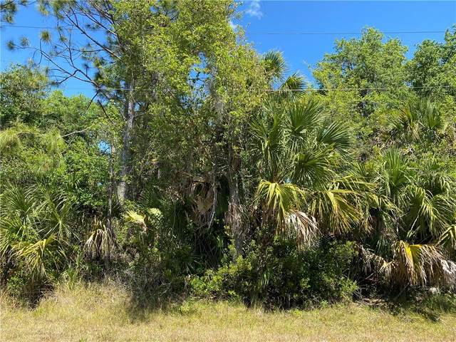 26146 Hapsburg Road, Punta Gorda, FL 33955 (MLS #C7427653) :: The Heidi Schrock Team