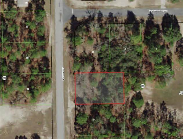 9855 N Sistine Terrace, Citrus Springs, FL 34433 (MLS #C7428460) :: Heckler Realty