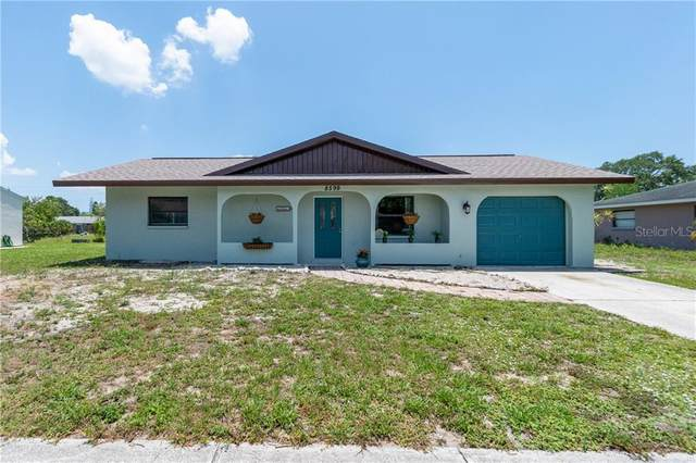 8599 Alam Avenue, North Port, FL 34287 (MLS #C7429098) :: Premier Home Experts
