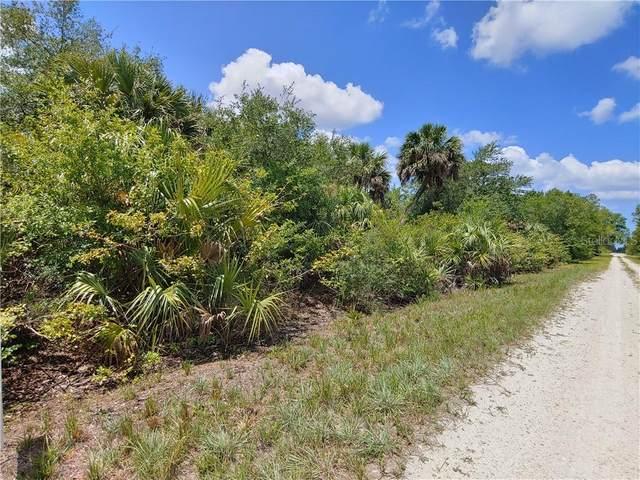 28055 Las Lomas Drive, Punta Gorda, FL 33955 (MLS #C7429169) :: Armel Real Estate