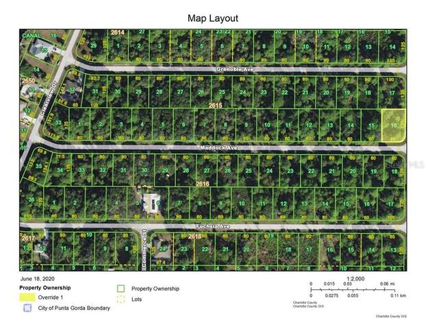 1057 Shearer Street, Port Charlotte, FL 33953 (MLS #C7429997) :: Team Pepka