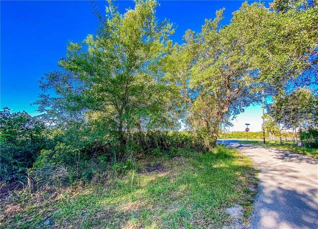 33340 Washington Loop Road, Punta Gorda, FL 33982 (MLS #C7430029) :: Alpha Equity Team