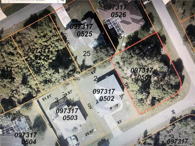 Denali Street, North Port, FL 34287 (MLS #C7430091) :: Team Bohannon Keller Williams, Tampa Properties