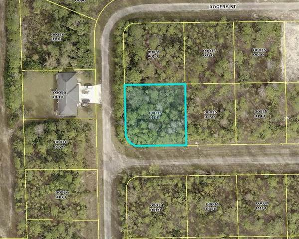 228 Singer Street, Lehigh Acres, FL 33972 (MLS #C7430245) :: Bustamante Real Estate