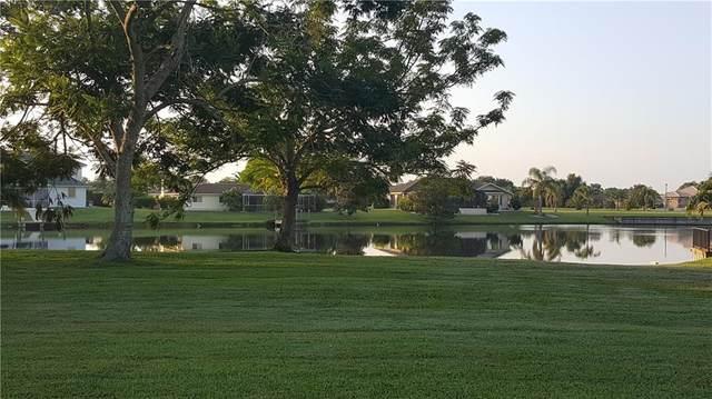 12644 SW Sheri Avenue, Lake Suzy, FL 34269 (MLS #C7430330) :: Lockhart & Walseth Team, Realtors
