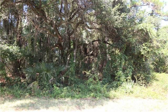 Coldwater Lane, North Port, FL 34286 (MLS #C7430419) :: Team Bohannon Keller Williams, Tampa Properties