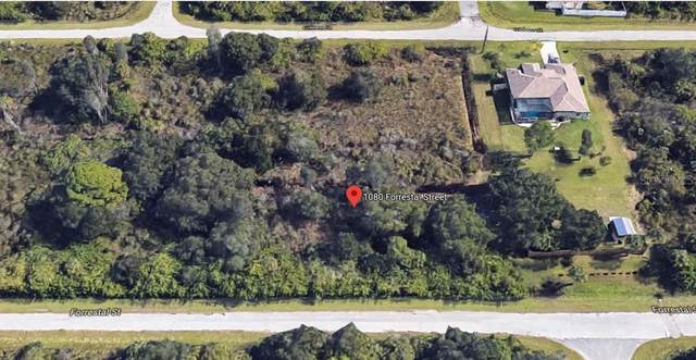 1080 Forrestal Street, Port Charlotte, FL 33953 (MLS #C7430538) :: Burwell Real Estate