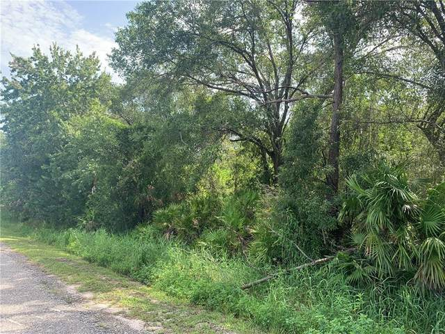 N 12TH Avenue, Arcadia, FL 34266 (MLS #C7430564) :: Medway Realty