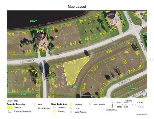 24385 Peppercorn Road, Punta Gorda, FL 33955 (MLS #C7430757) :: Premium Properties Real Estate Services