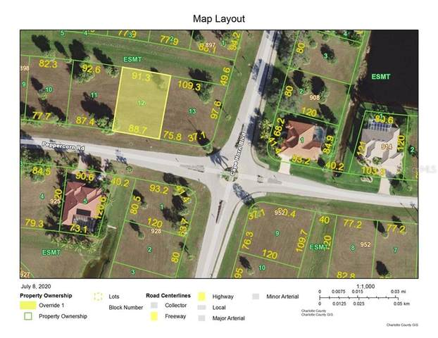 24284 Peppercorn Road, Punta Gorda, FL 33955 (MLS #C7430760) :: Premium Properties Real Estate Services